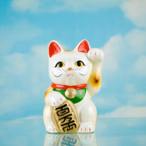 thinkstockimages-g-luckycat
