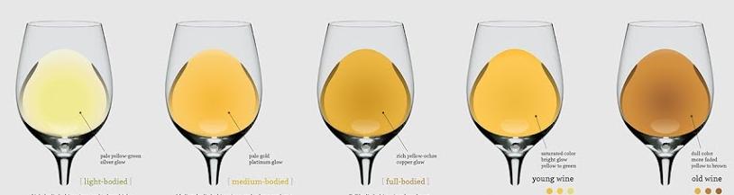 Taste wine like a pro