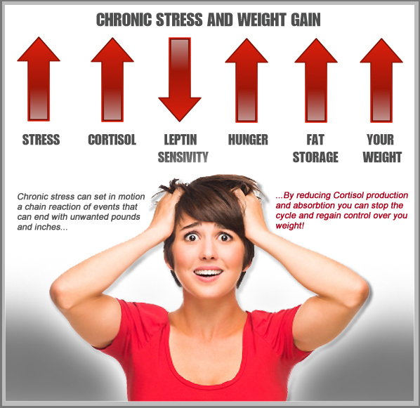 cortisol-chart2-copy