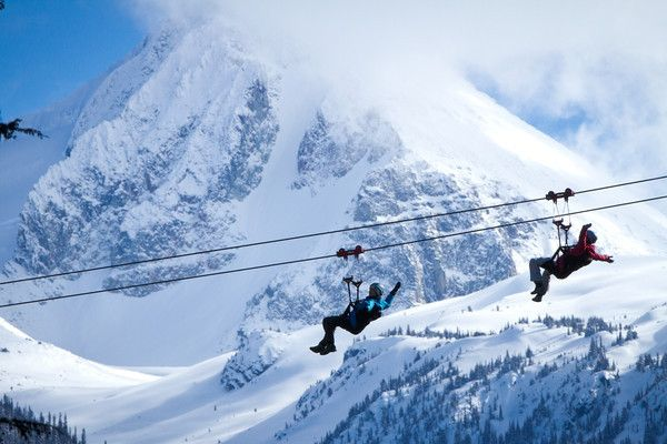 Get Your Adrenaline Flowing With A Winter Adventure Of Lifetime At Grouse Mountain The 3 Line Tour Will Give You And Partner An Alternate View